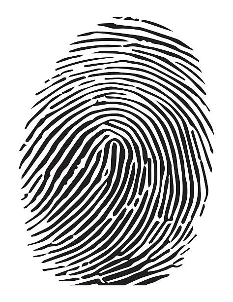 Vector of a finger print vector art illustration