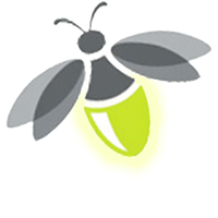 Firefly Transparent PNG Image