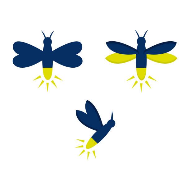 Firefly vector art illustration