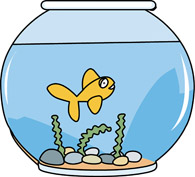 fish bowl with a goldfish. Size: 98 Kb