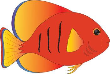 ... Fish Clip Art Tropical Fish Clipart -... Fish clip art tropical fish clipart free - dbclipart clipartall.com ...-5