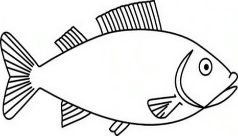 Fish Drawing Outline. Clipart .