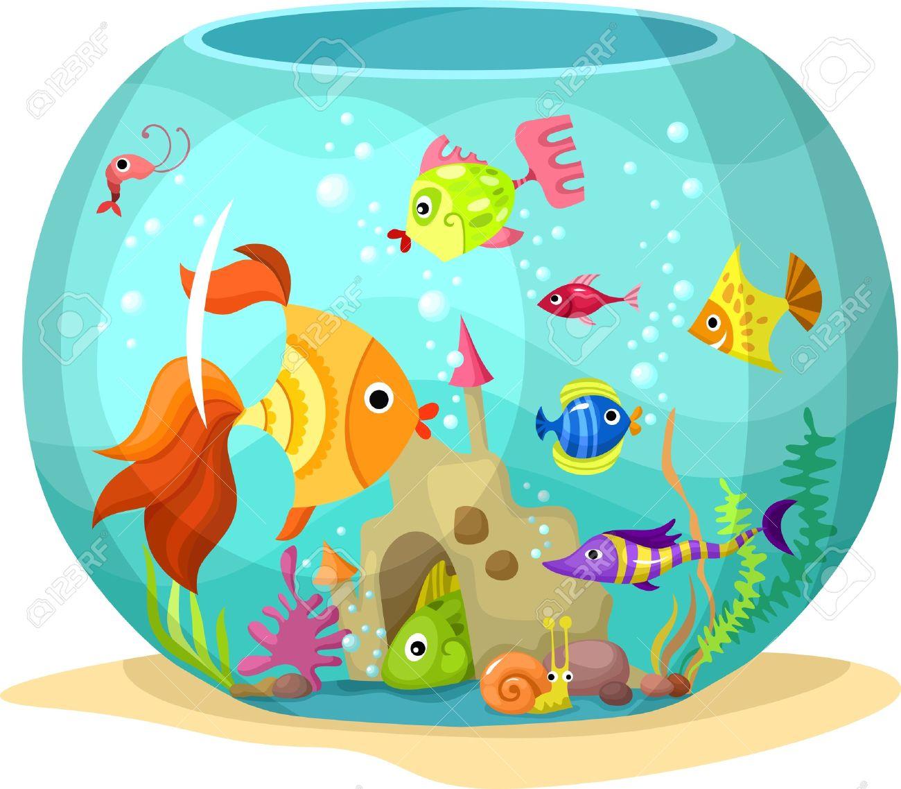 fish tank: aquarium-fish tank: aquarium-3