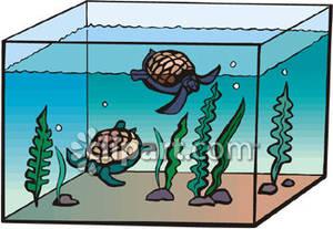 Fish Tank Clip Art-Fish Tank Clip Art-12