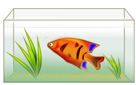 Fish Tank Clipart - Blogsbeta