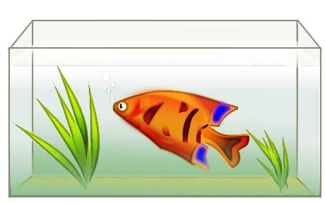 Fish Tank Clipart - Blogsbeta-Fish Tank Clipart - Blogsbeta-11