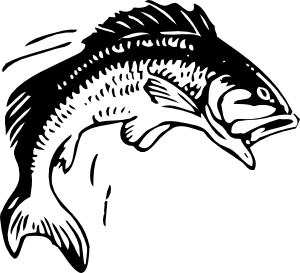 Fishing Fish Clipart Ideas . - Free Fish Clip Art