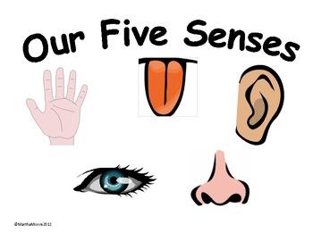 Five Senses Clipart Cliparthut Free Clipart