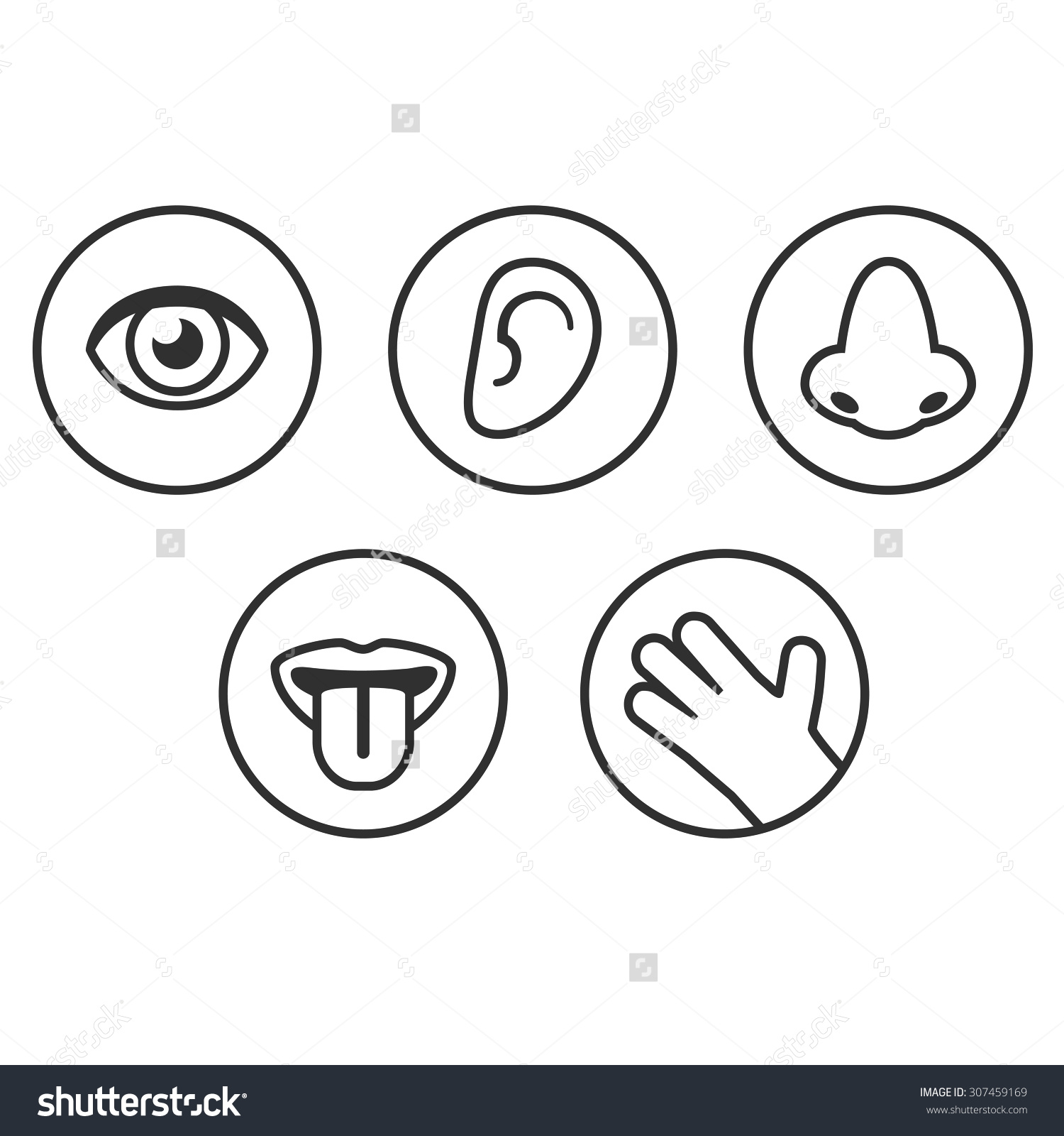 Five Senses Icons. Save To A Lightbox-Five senses icons. Save to a lightbox-12