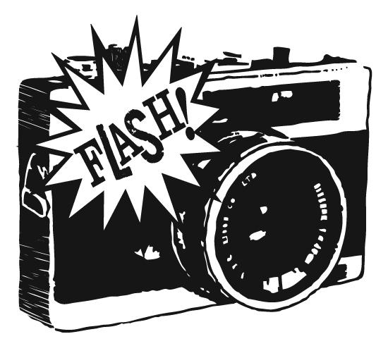Flash Camera Shiraz At Vector
