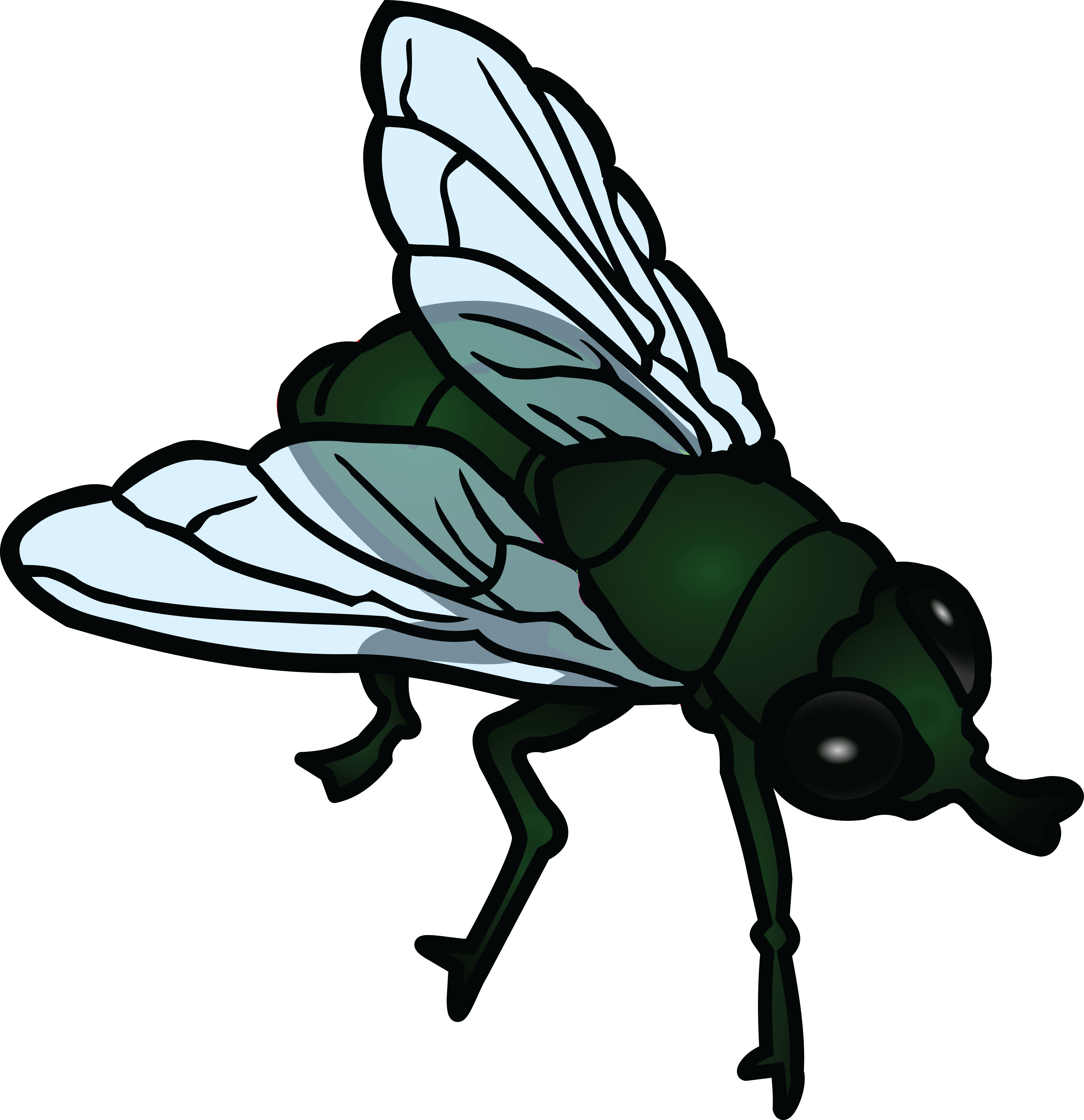 Free Clipart Of A fly #00011377 .