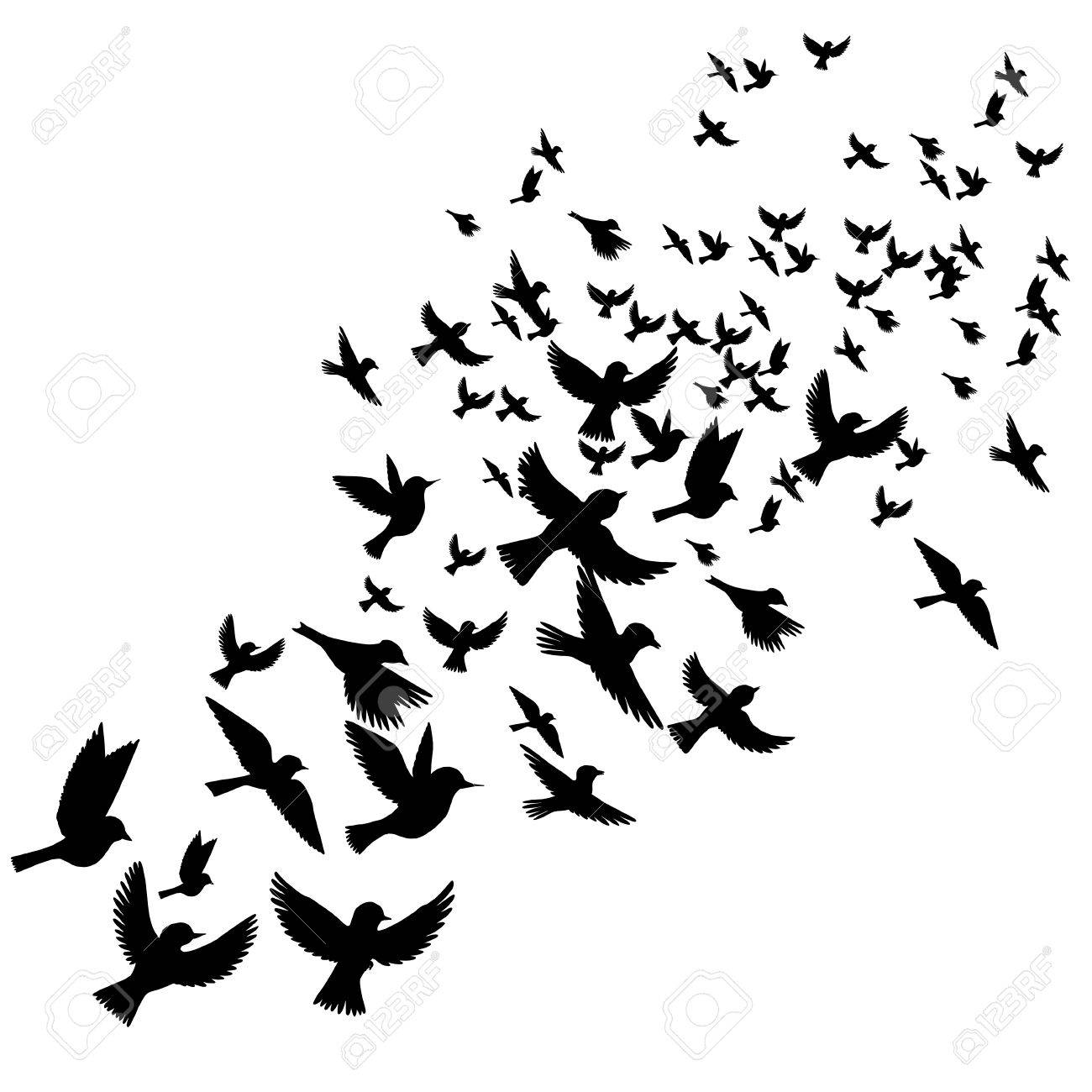 Bird flock, vector flying birds silhouettes, hand drawn songbirds Stock  Vector - 75011021