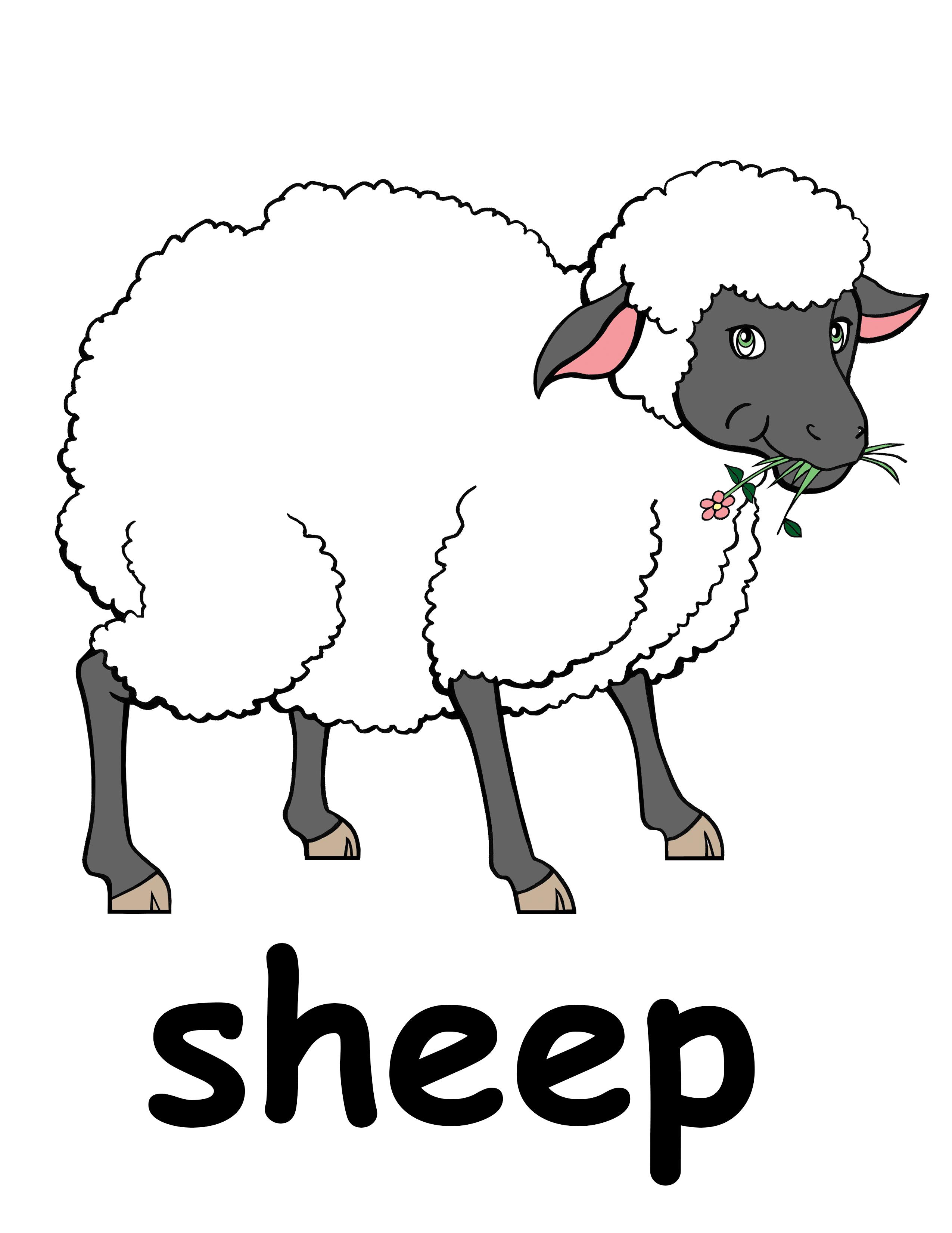 Flock of sheep clip art-Flock of sheep clip art-18