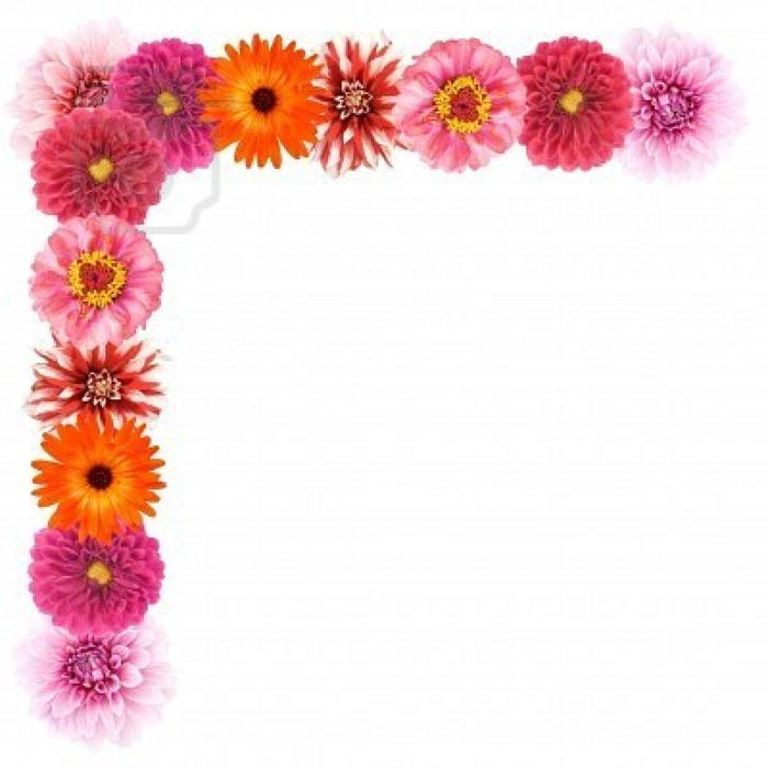Flower border flower clip art border pictures reference 2