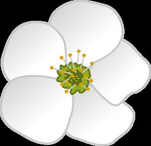 Flower Clip Art. Magnolia Clipart-Flower Clip Art. Magnolia Clipart-0