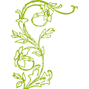 Flowers and vines images clipart