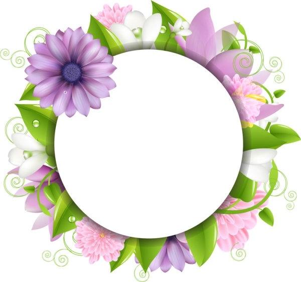 flowers border 02 vector