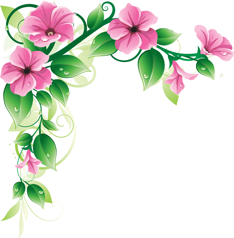 Flowers Borders High-Quality Png PNG Image