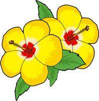 Colombine Flower Size: 85 Kb