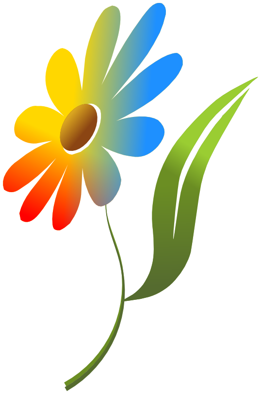 flower multi color - /plants/flowers/colors/flower_multi_color.png.html