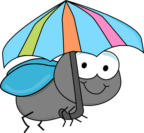 Fly and Umbrella