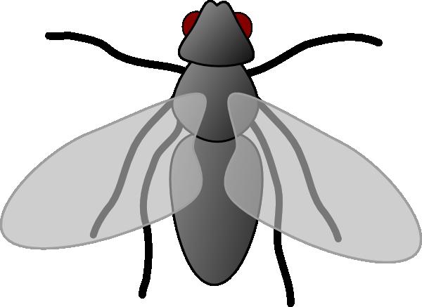 Fly3 Clip Art Vector