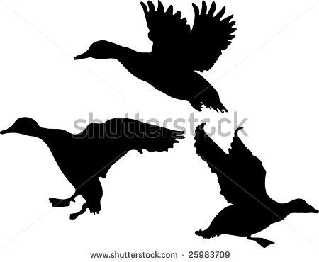 flying mallard duck clipart