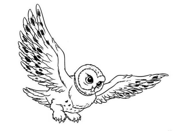 Flying Snowy Owl Clipart-flying snowy owl clipart-8
