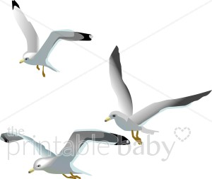 Flying Seagulls Clipart