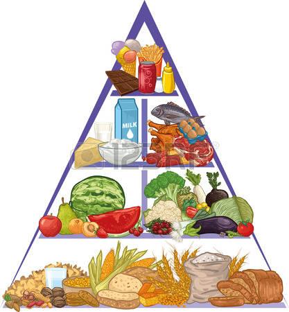 food pyramid: Food pyramid Illustration