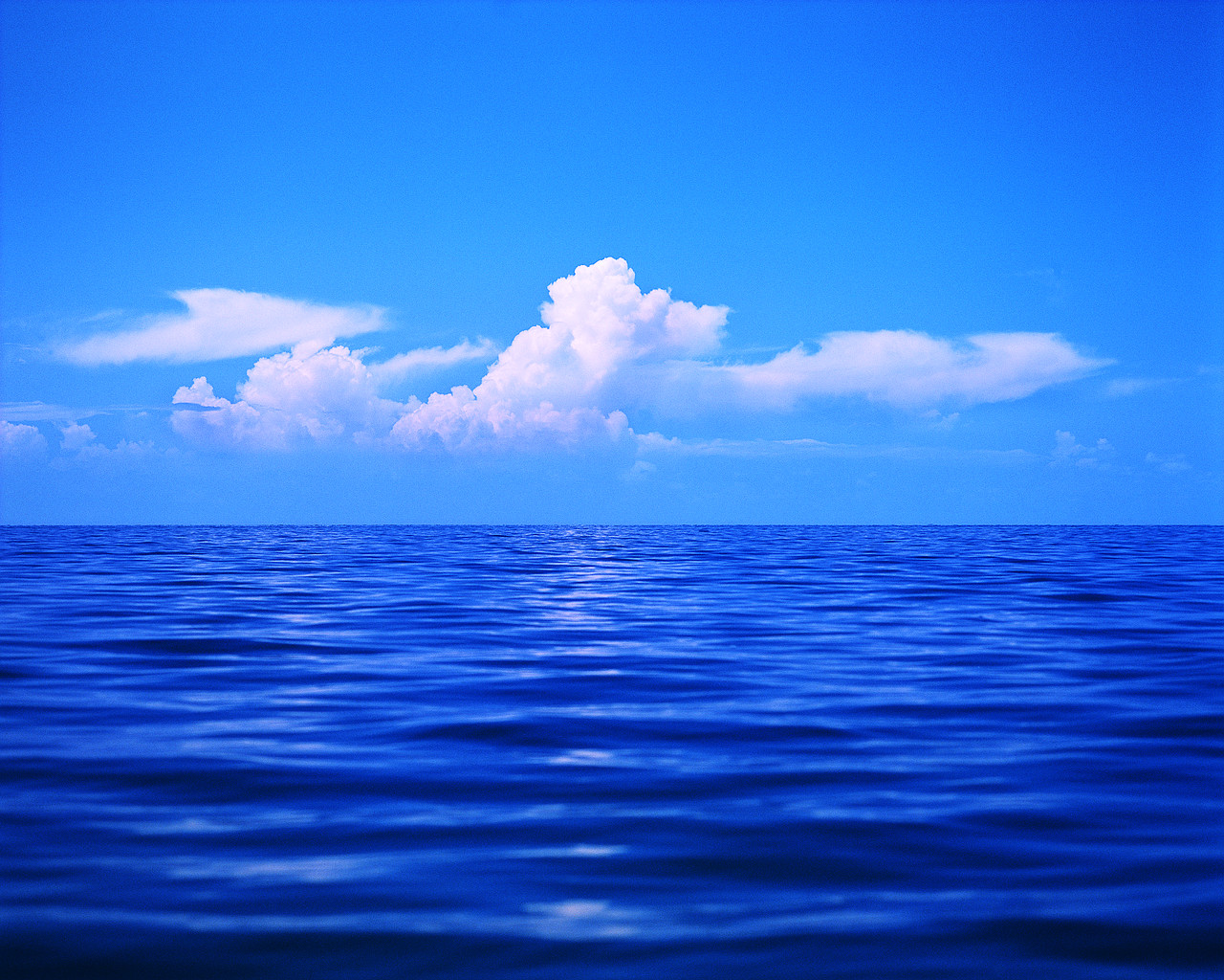 For Many Years Those Who Love The Ocean -For Many Years Those Who Love The Ocean For A Variety Of Personal-4