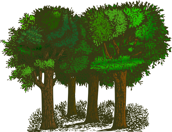 Forest Clipart-Forest Clipart-11