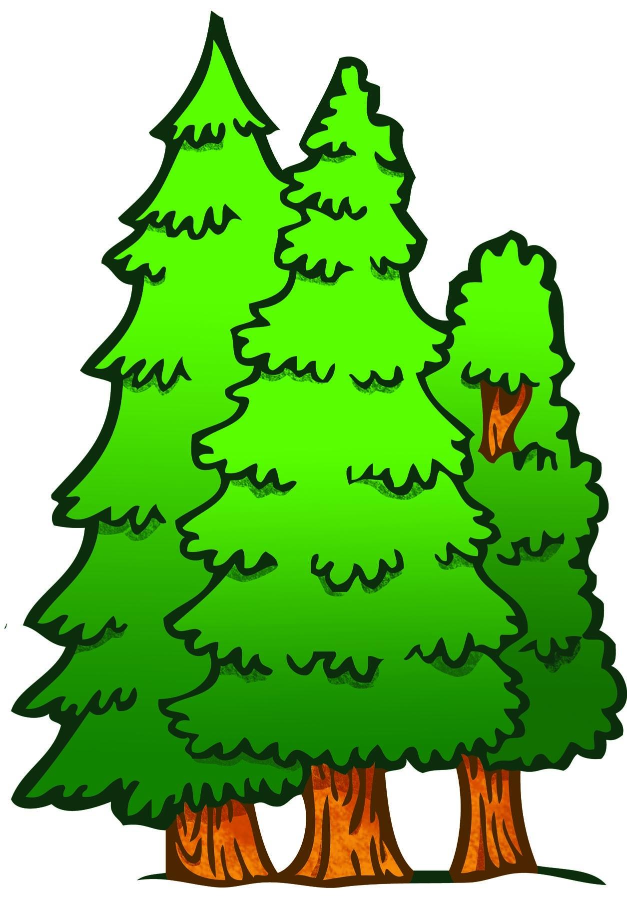 Forest Trees Clipart-Forest Trees Clipart-10