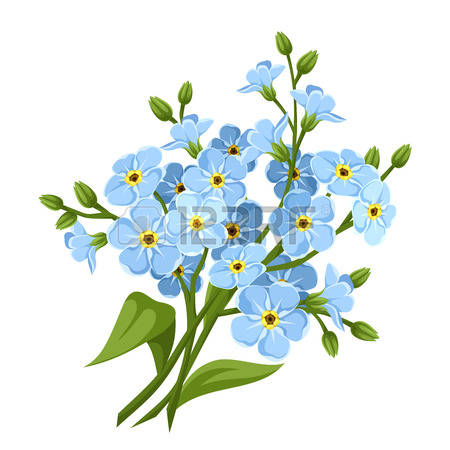 Blue Forget-me-not Flowers. Vector Illus-Blue forget-me-not flowers. Vector illustration.-2