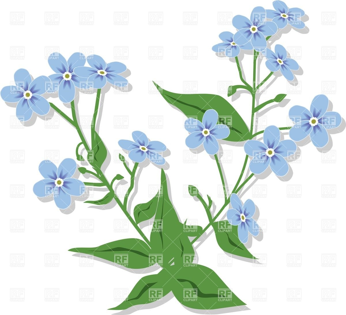 Bouquet From Forget-me-nots - Violet Flo-Bouquet from forget-me-nots - violet flowers Royalty Free Vector Clip Art-3