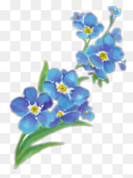 Forget-me-beautiful Hand-painted, Forget-forget-me-beautiful hand-painted, Forget-me-beautiful, Hand-6
