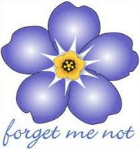Forget-me-not-Forget-me-not-7