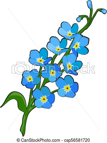 Forget Me Not Flower - Csp56581720-forget me not flower - csp56581720-10
