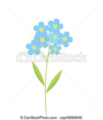 Forget Me Not Flowers - Csp49989846-Forget me not flowers - csp49989846-12