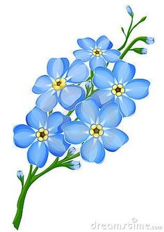 Forget Me Not Tattoo Sketch-Forget Me Not Tattoo Sketch-15
