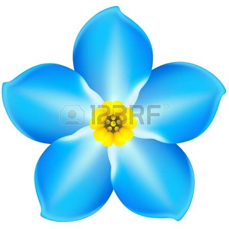 Vector Illustration - Blue Forget-me-not-Vector illustration - blue forget-me-not EPS 10, RGB Created with gradient-19