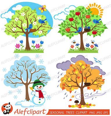 Four Seasons Trees Clipart and Vector with Spring, Summer, Fall and Winter Trees from