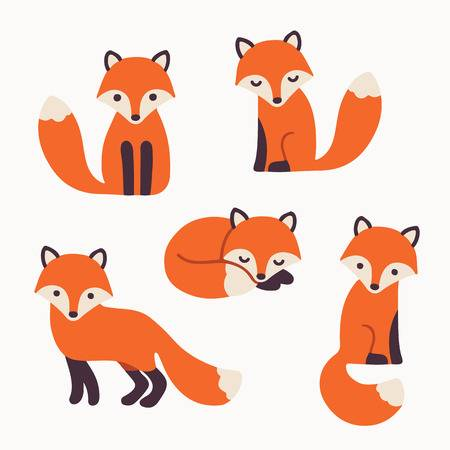 Set of cute cartoon foxes in  - Fox Clipart