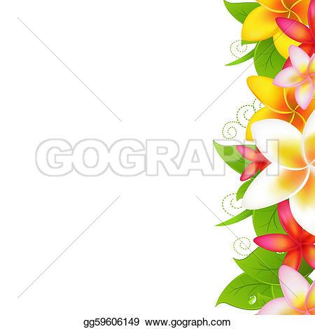 Frangipani u0026middot; Garland From Plumeria