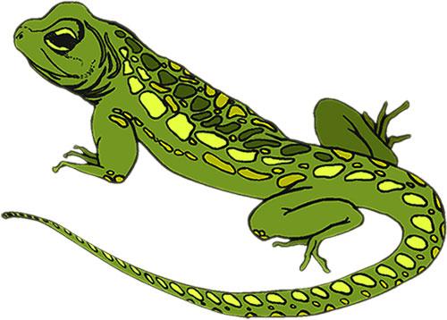 Free Animated Animals Birds Lizard Clipa-Free Animated Animals Birds Lizard Clipart-6