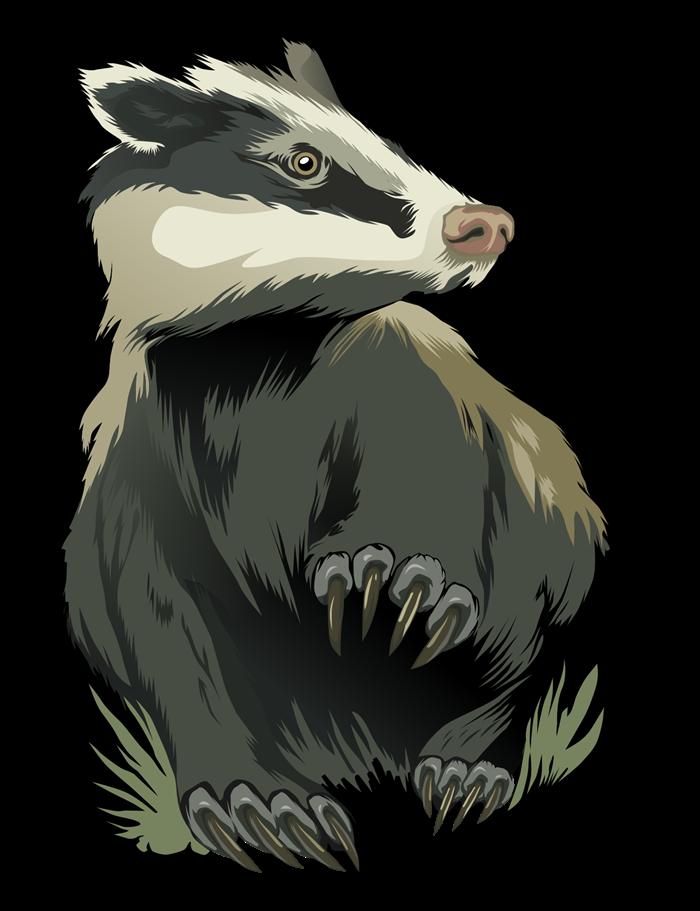 Free Badger Clip Art u0026middot; badger