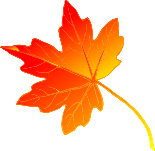 Free Beautiful Maple Leaf Clip Art