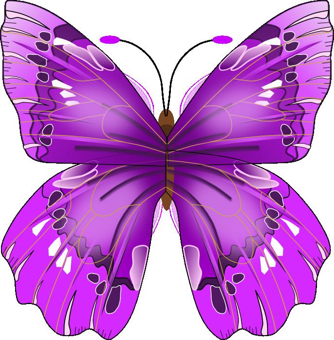 Free Beautiful Purple Butterfly Clip Art-Free Beautiful Purple Butterfly Clip Art-3