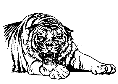 Free Black And White Tiger Clipart-Free Black and White Tiger Clipart-4