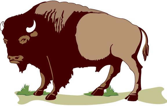 Free buffalo clipart image-Free buffalo clipart image-5